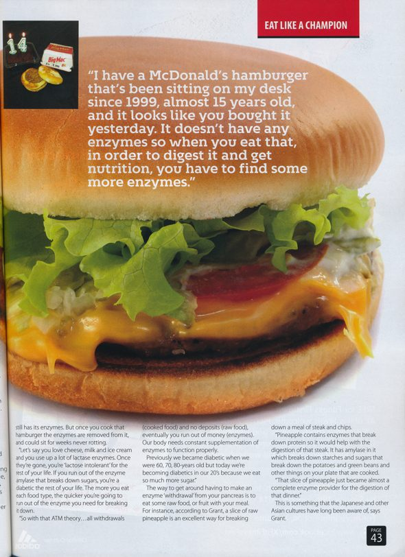 Enzymes article and McDonald Hamburger
